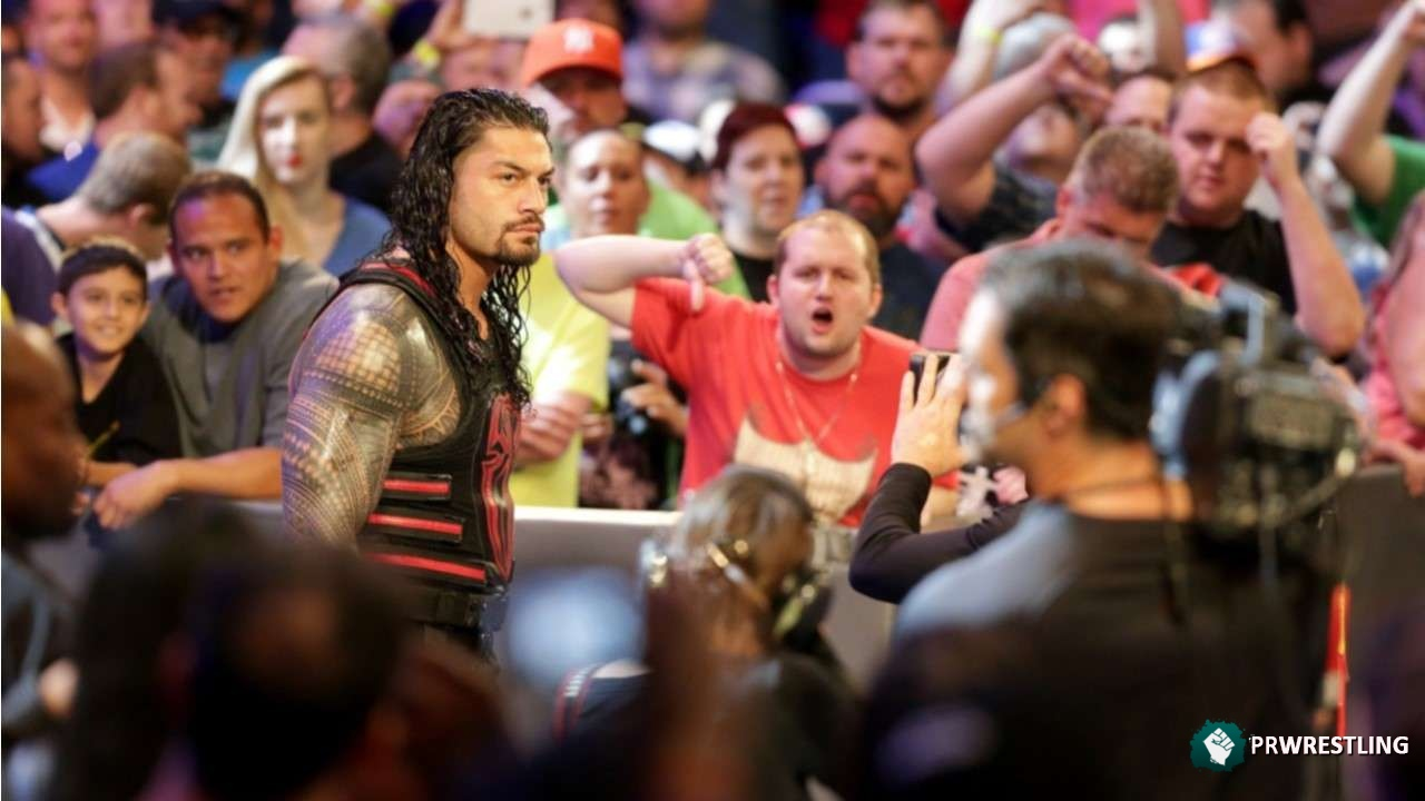 WWE Fans